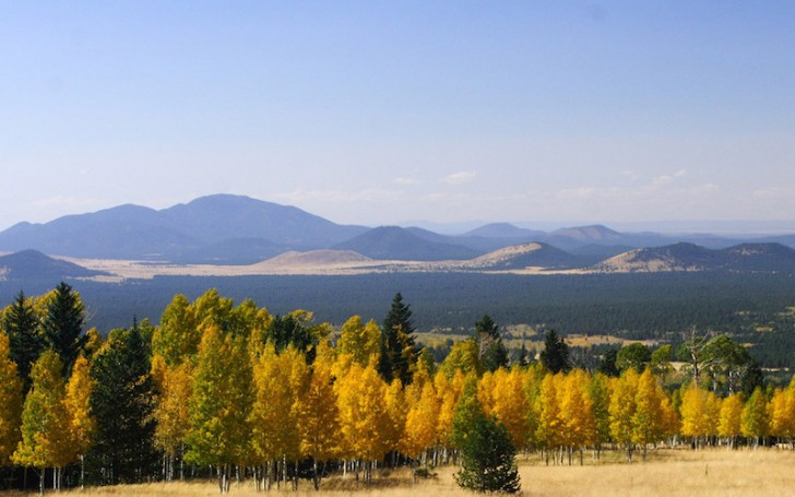 northern-arizona