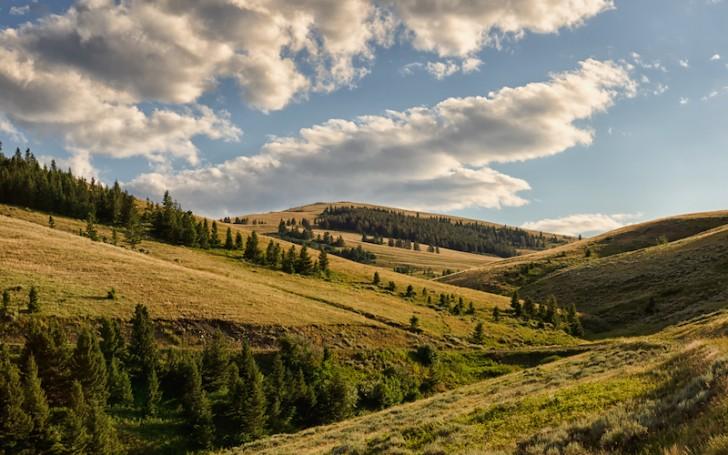 south-central-montana