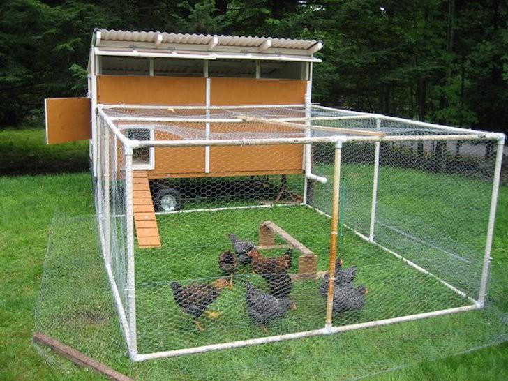 pvc-chicken-coop