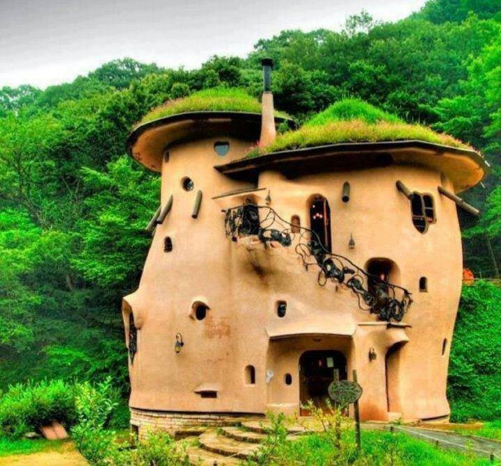 Cob House with Living Roof