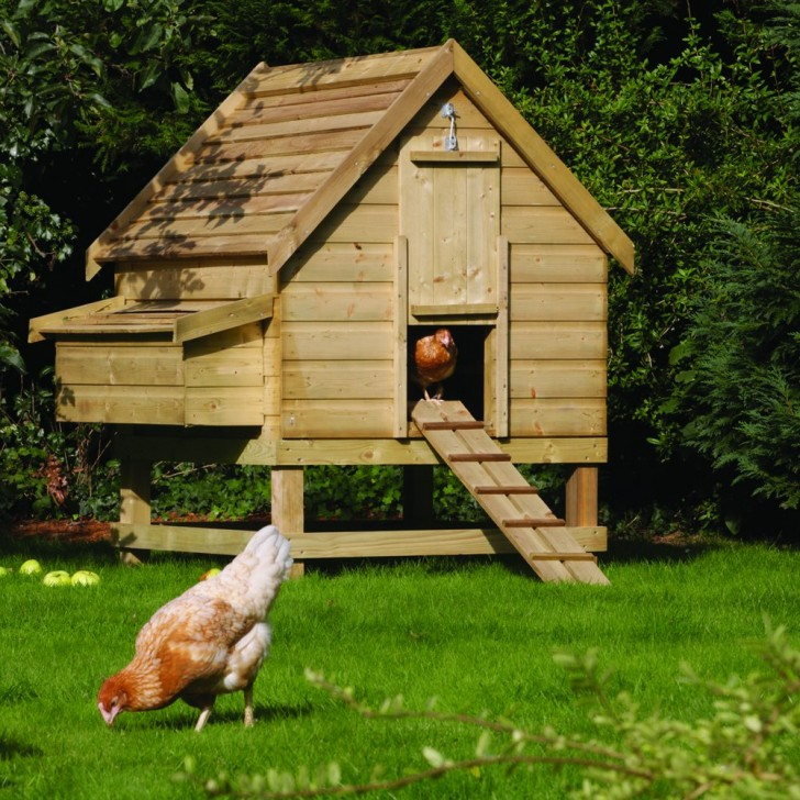 Как сделать дом на курицах