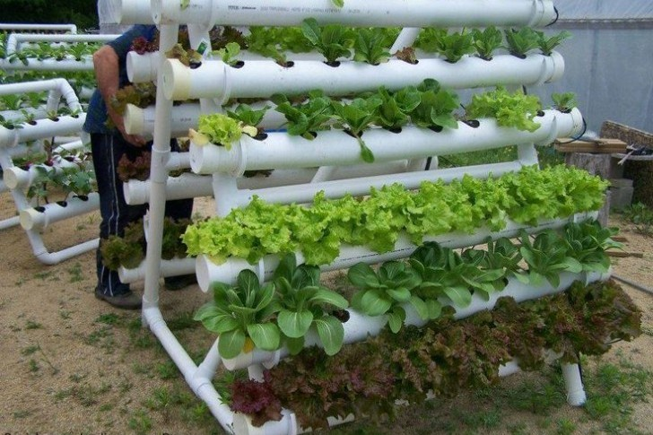 Hydroponic PVC Garden Project