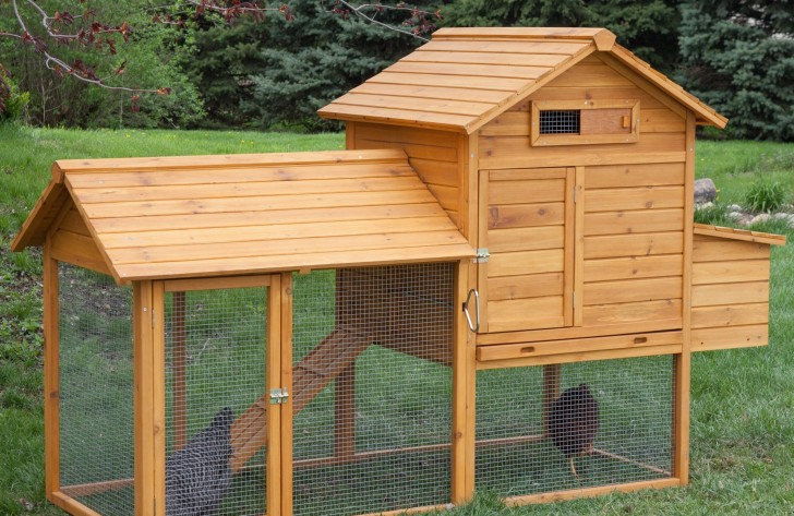 14 ingenious chicken coop plans designs for Simple chicken coop plans for 6 chickens